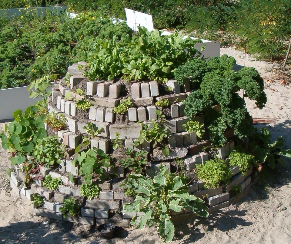 Workshop groente-aardbeientoren bouwen